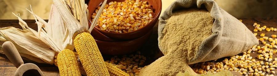 Polenta del Marchesato 100% biologiche prive di glutine